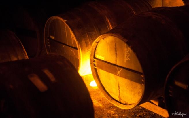 remy-martin-cognac-39