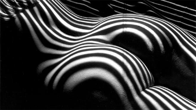 lucien-clergue-nude-zebra-1