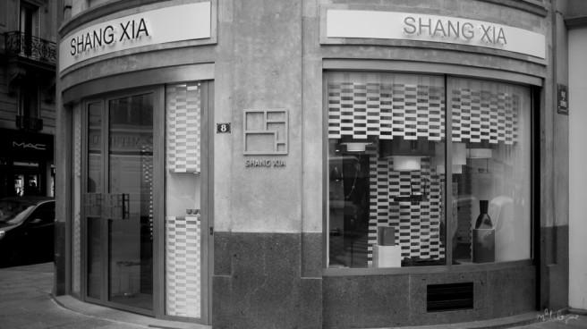 shang-xia-5