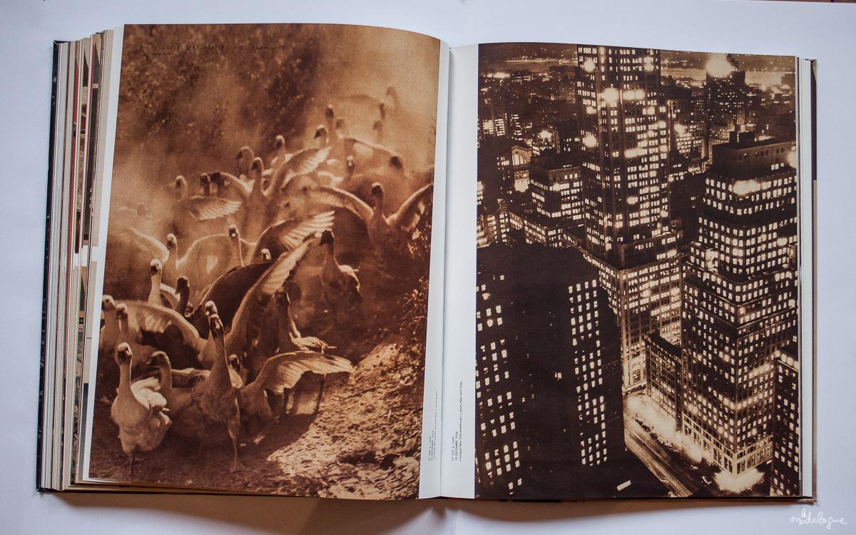 vu-magazine-30